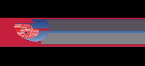 MTHFRFertility