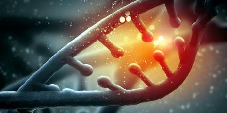 mthfr-protein-genetics-homocysteine-levels